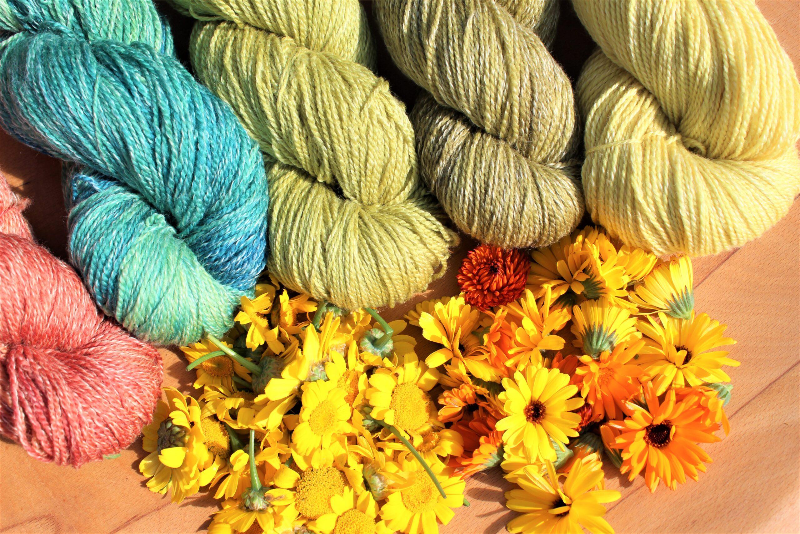Dye workshops on Zoom