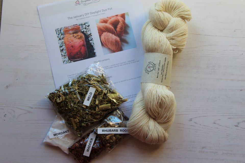 January DIY Daylight Dye Kit