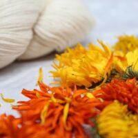 Calendula Dye Kit